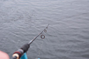 A Fishing rod, spinning reel on the river background